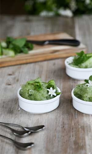 Signature Recipes | Cucumber, gin & tonic granita